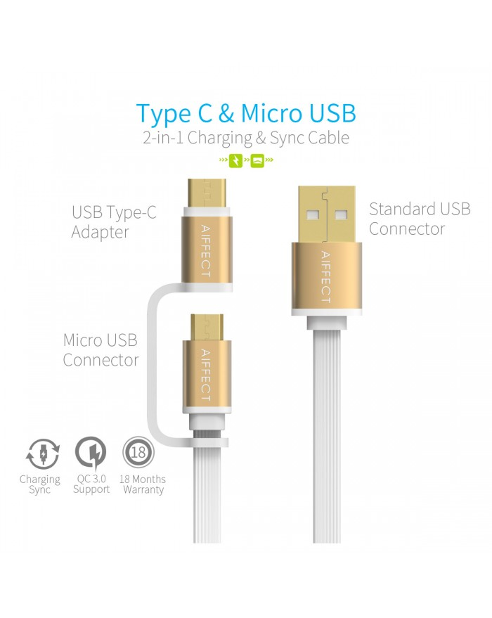 AIFFECT 2 Pack 3.3Ft 2 in 1 Duo USB Cable, Micro B to Type A Data & Charging Cable with Type C Converter for Android and Type C Phones and Tablets - Gold